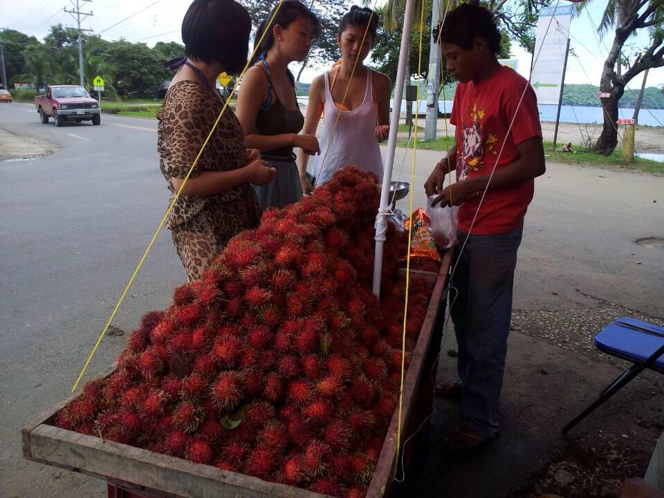 Xuan Liu Costa Rica Rambutans